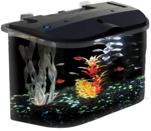 API Panaview Aquarium Kit with LED Lighting and Power Filter