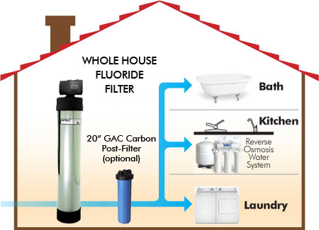 Top 5 Best Whole House Water Filtration System Reviews In 2020