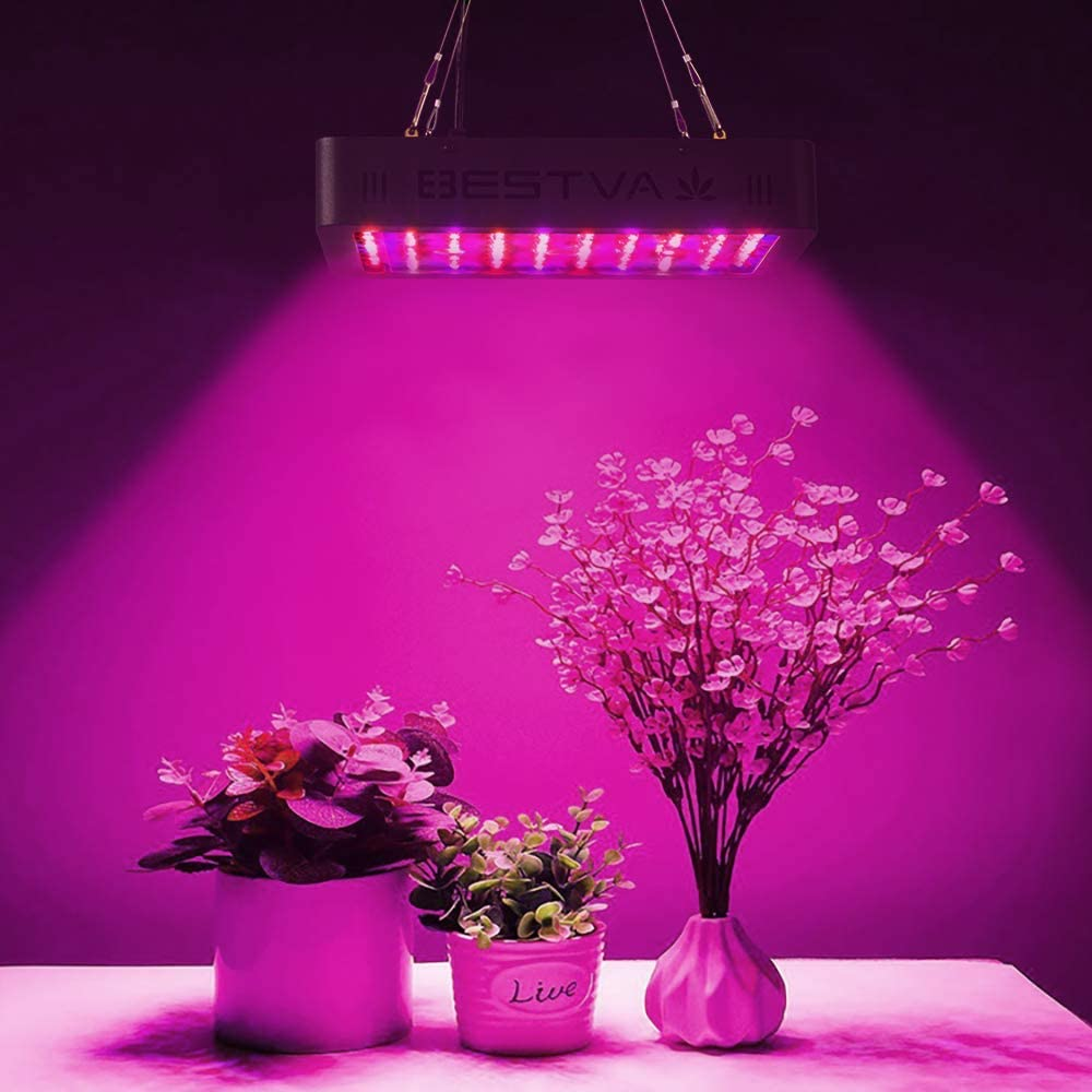 Top 7 Best Led Grow Lights 2020 Comparison