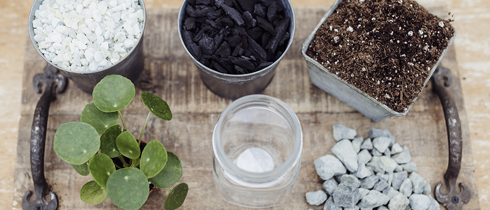 Method Two: Using activated charcoal