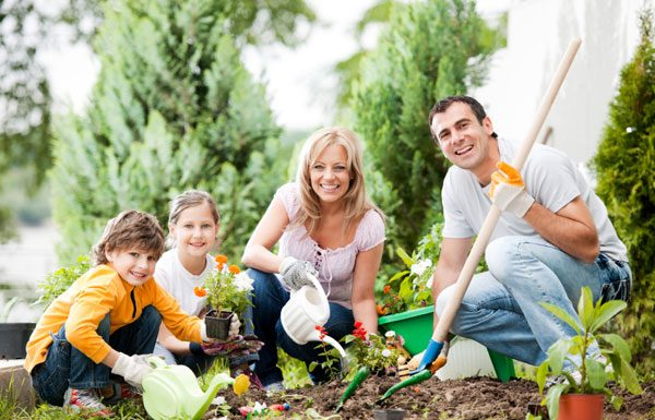 How To Take Care Of A Garden Healthy & Happy