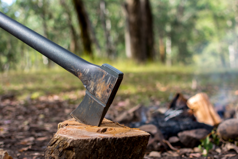 How To Know Different Types of Axes, Head, & Uses