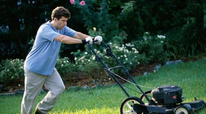 How To Understand Different Types Of Lawn Mowers Happy