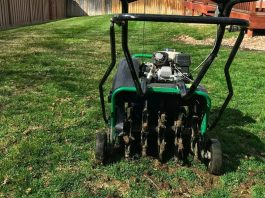 How To Aerate Lawn   Everything You Need To Know