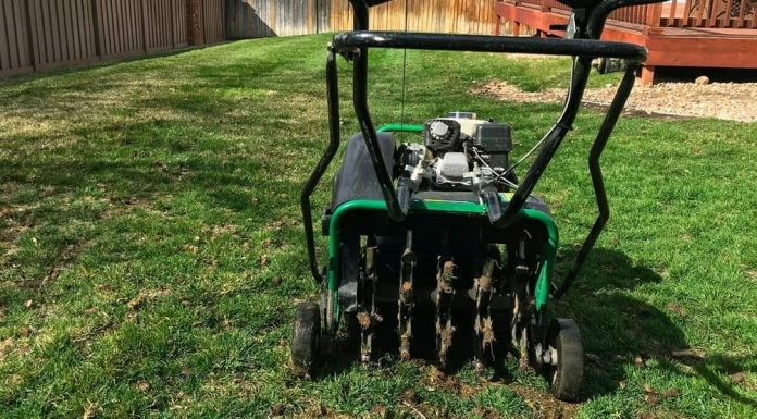 How To Aerate Lawn | Everything You Need To Know