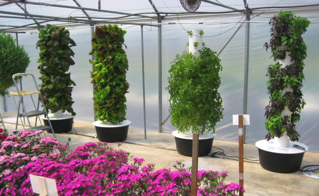 How To Set Up A Tower Garden