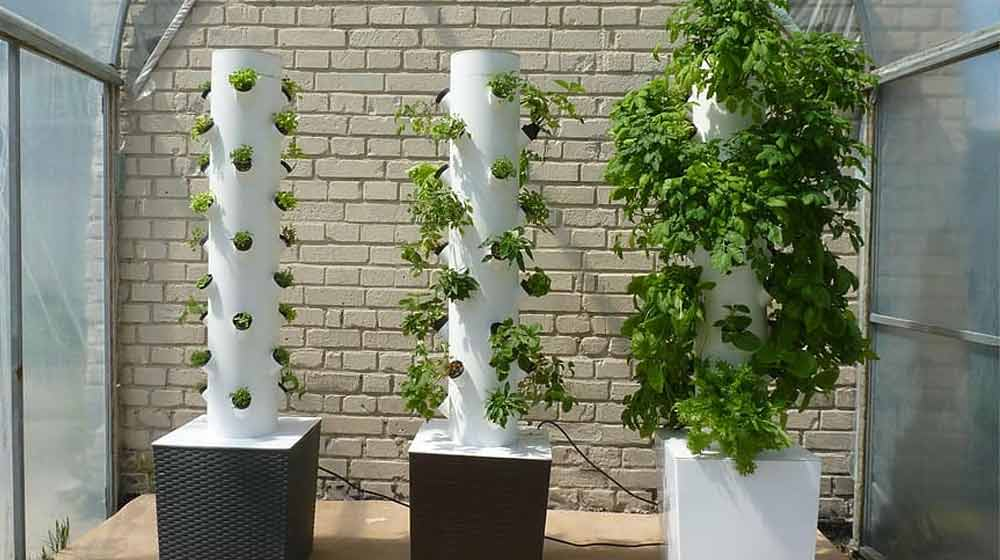 When Should You Use A Tower Garden?