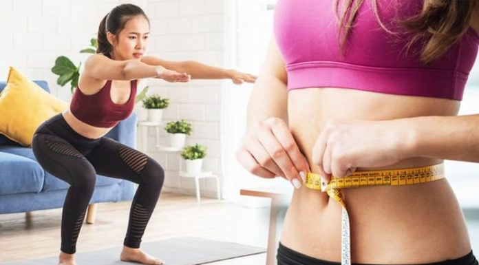 101 Workout Plan To Lose Belly Fat - Why Is Important